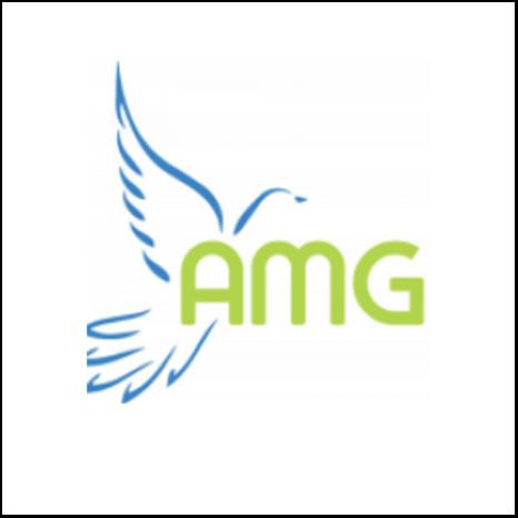AMG Portfolio